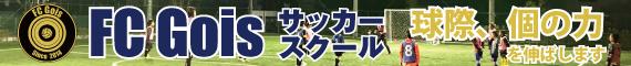 FC Gois School
